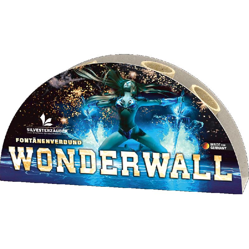 Lesli Wonderwall