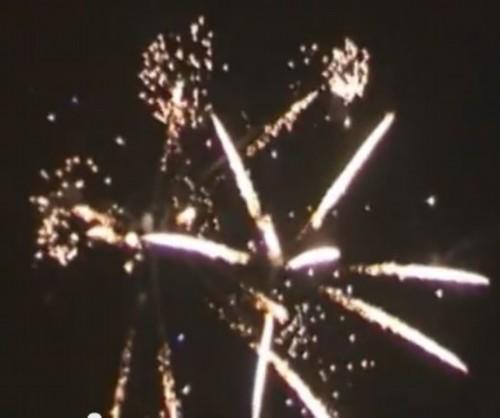 Pyrotrade Palmdreams Z Shape